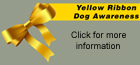 Click to find out more about the Yellow ribbon program